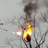 ضرب عش الدبابير بطائرة قاذفة للهب